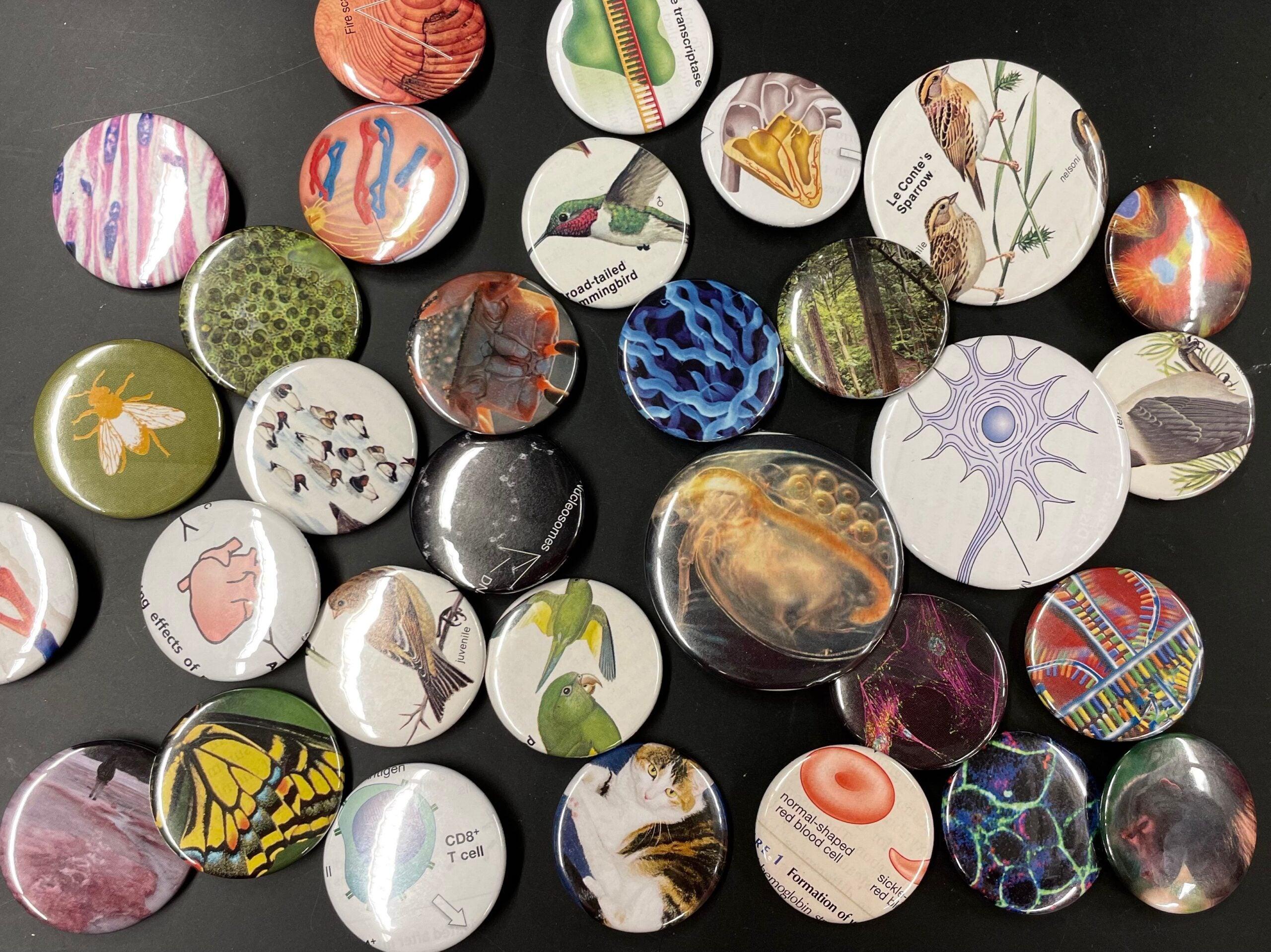 Biology buttons